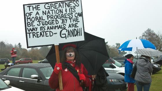 Barking Mad Rally protester
