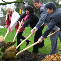Cherry tree planting, Vancouver