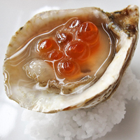 C Kusshi oyster