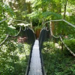UBC Gardens: A Day Out in Nature