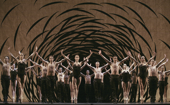 Artists of the Ballet Emergence