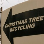 Christmas Tree Recycling Spots Around Vancouver
