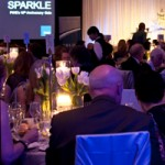 FWE Sparkle Gala: 10 Years Strong!