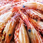 Spot Prawn Festival at C Restaurant