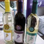Barefoot Wine & Bubbly at Boathouse