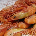 Heads or Tails Spot Prawn Kick-Off