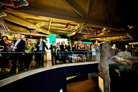Night at the Aquarium 2011