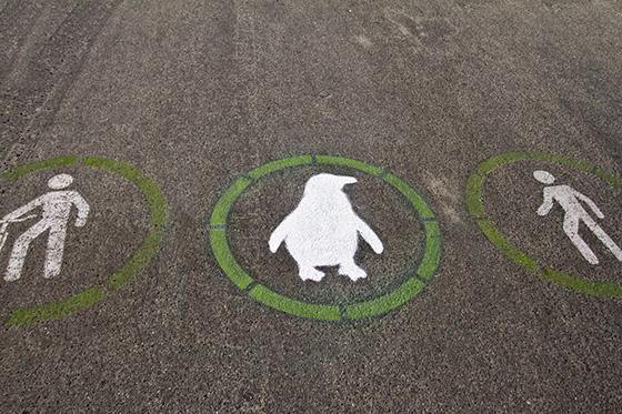 Waddle Lane with bike logo