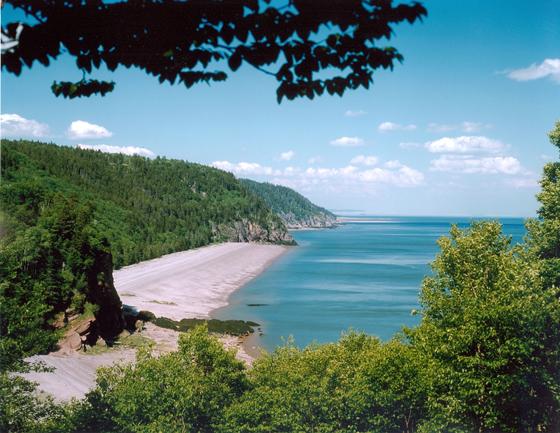 Bay of Fundy coast line