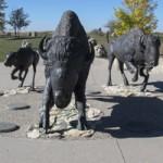 Saskatoon History and Heritage