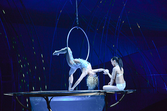 Aerial Hoop and Water Bowl