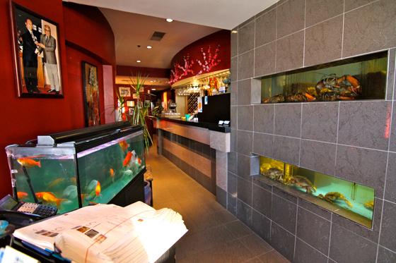 Chongqing interior. Photo by Shark Truth
