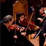 MusicFest Van Suspends Operations