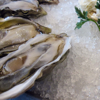 The Fish Shack oysters
