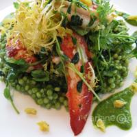 ORU poached lobster salad