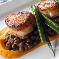 Luke's wild sea scallops