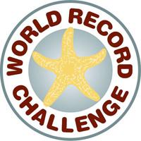 World Record icon