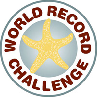 World Record icon