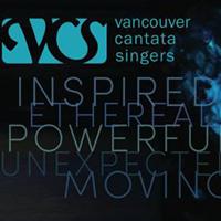 VCS banner