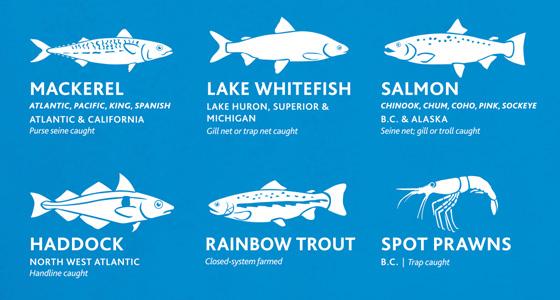 Ocean Wise poster