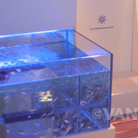 Fish pedicure Secrets Silversands Spa by Pevonia