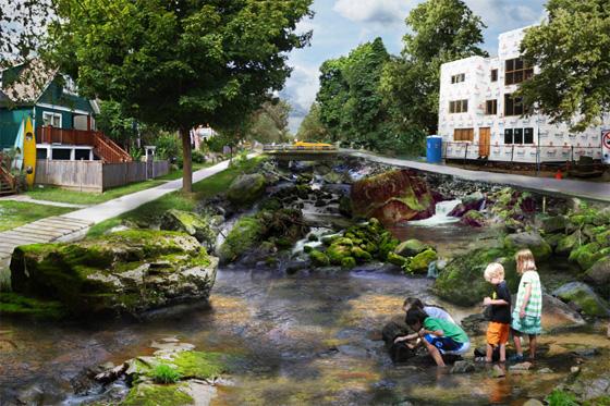 Rewilding photo intervention creek