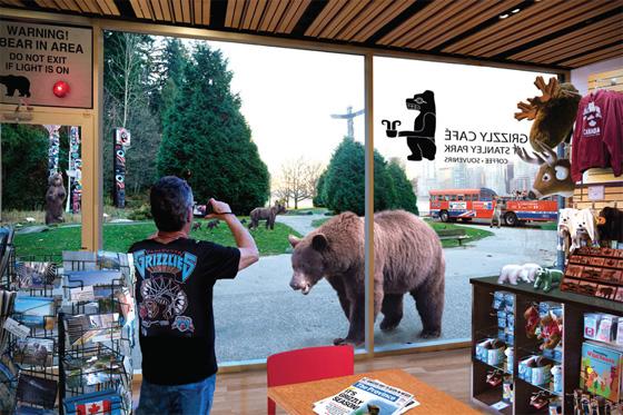 Rewilding photo intervention grizzlies