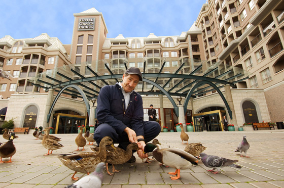 Groundskeeper Joe and the Ducks