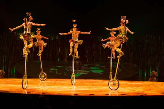 Unicycles with Bowls