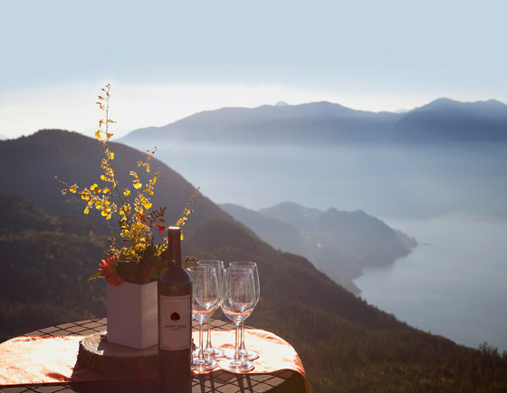 Desert Hills wines at Sea to Sky Gondola