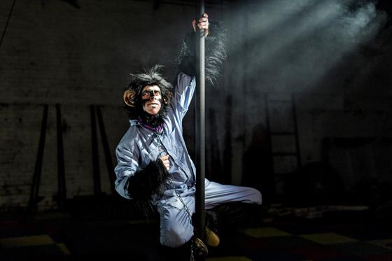Greatest Monkey Show