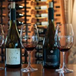Oregon: Touring Washington County and Mt. Hood Territory Wineries