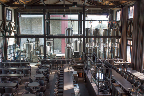 Steel Toad Brewpub Interior