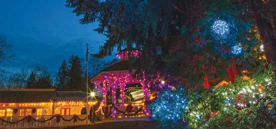 Heritage Christmas lights