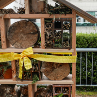 Fairmont Waterfront Bee Hotel