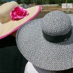 Fedoras and Fascinators: The Deighton Cup Lucky Number Seven at Hastings Racecourse