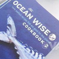 Ocean Wise 2 book detail