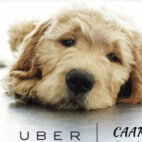 UBER and CAARE