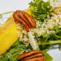 Village Bistro squash and quinoa salad