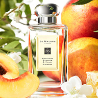 Nectarine Blossom & Honey