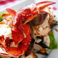 WildTale lobster plate