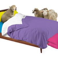 Bedface sheets