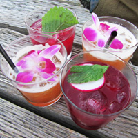 Mixology on the Pier
