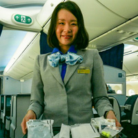 All-Nippon Airways premium economy