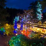Canyon Lights at Capilano Suspension Bridge Returns on November 24