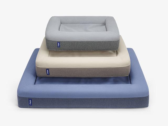 Casper dog mattress
