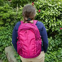 Patagonia Refugio 26L Backpack