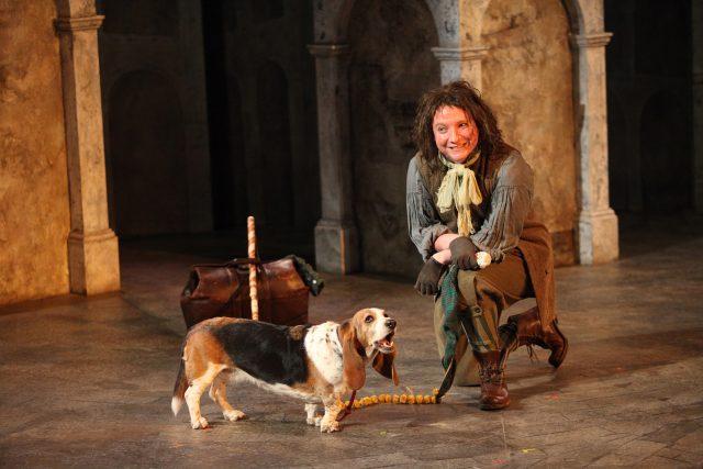 Andrew Cownden, Gertie the Basset hound