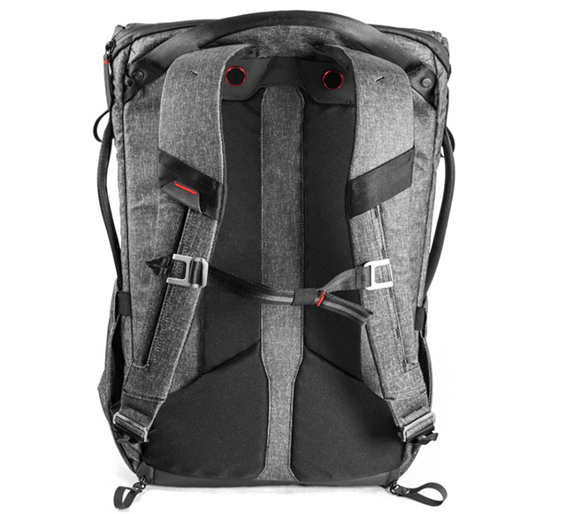 Everyday Backpack rear