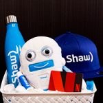 Holiday Giveaway: Enter to Win Shaw BlueSky TV's Netflix Prize Pack!